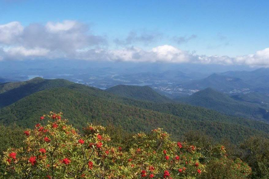 brasstown bald getaways in georgia