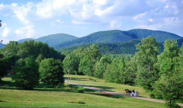 Georgia Mountain Vacation