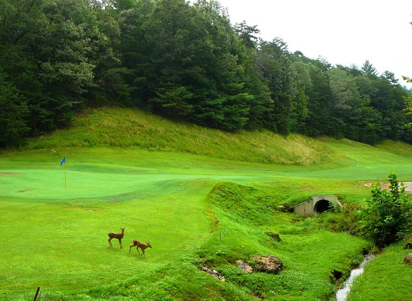 golf north georgia cabins rentals