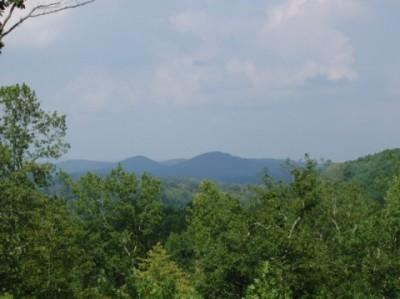 helen ga cabin rentals mountain view