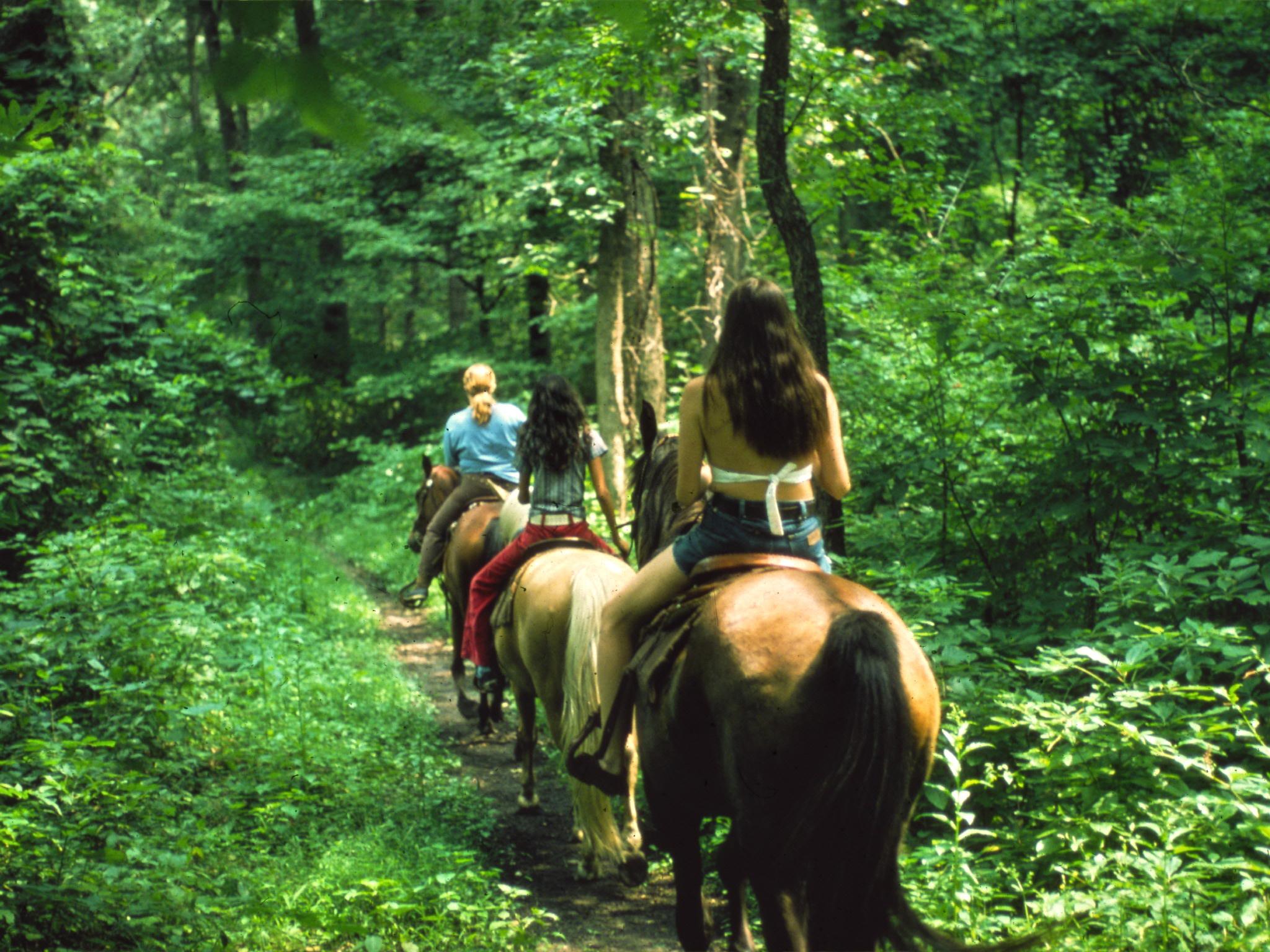 horseback riding helen ga