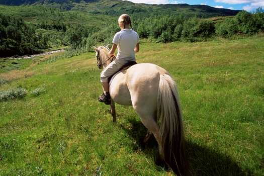 horseback riding near cabins in helen