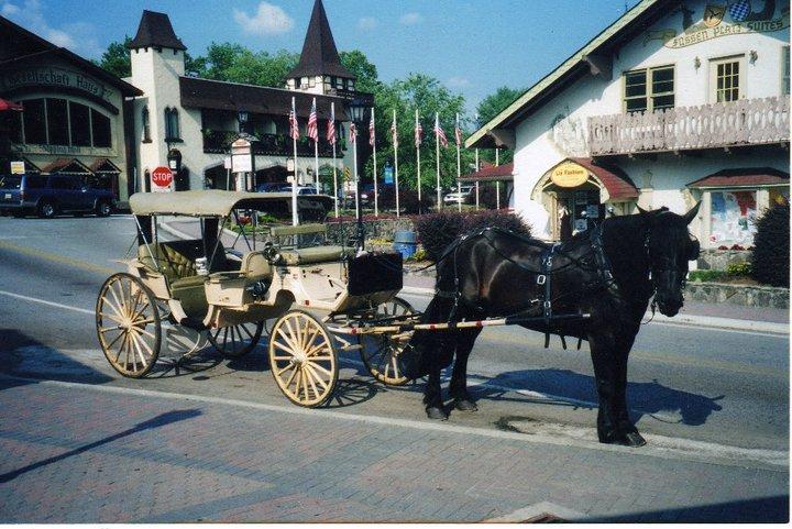 romantic-alpine-carriage-rides