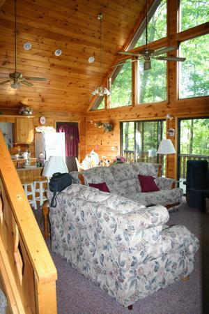 cabins in helen ga