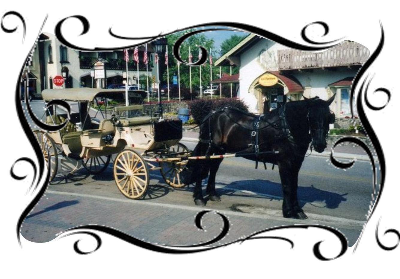 romantic carriage ride helen ga