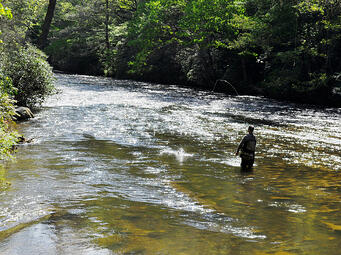 Georgia mountain cabin rentals are the best summer getaway for Fly fishing north georgia
