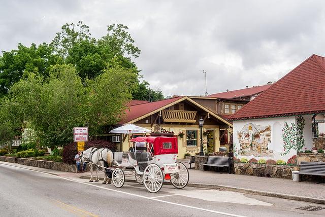 helen georgia horse