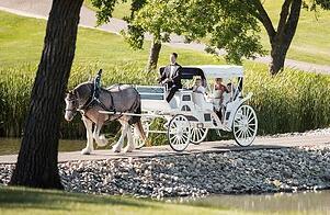 alpine carriage Helen Ga