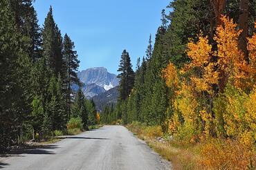 mountain cabin vacation