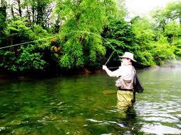 Cedar creek cabin rentals blog fishing for Trout fishing in helen ga