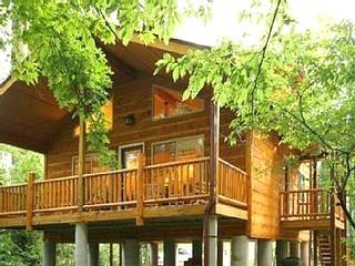 cabin rentals in helen georgia