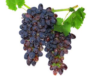 henen vineyards