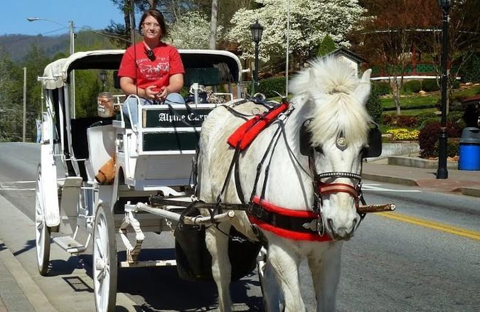 horse-drawn-carriage.jpg