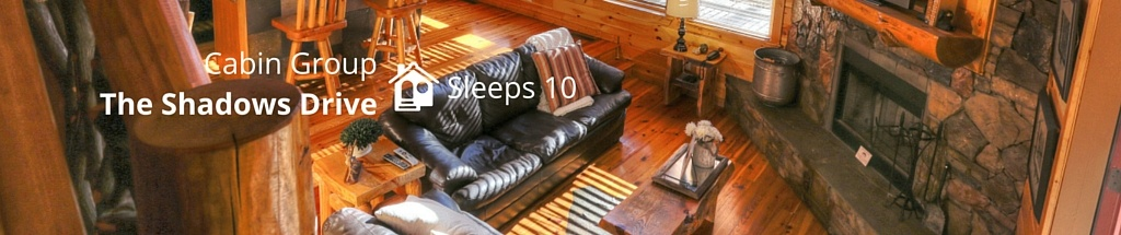 Cabin Rental Group For 10 People