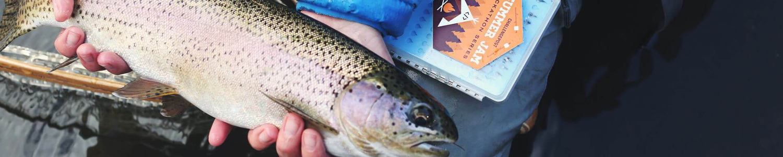 trout-fishing-helen-georgia-tiny-slice.jpg