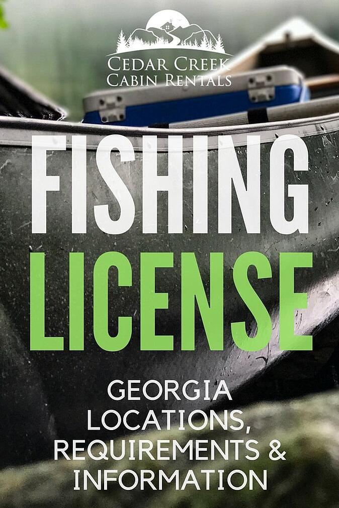 buy-georgia-fishing-license.jpg