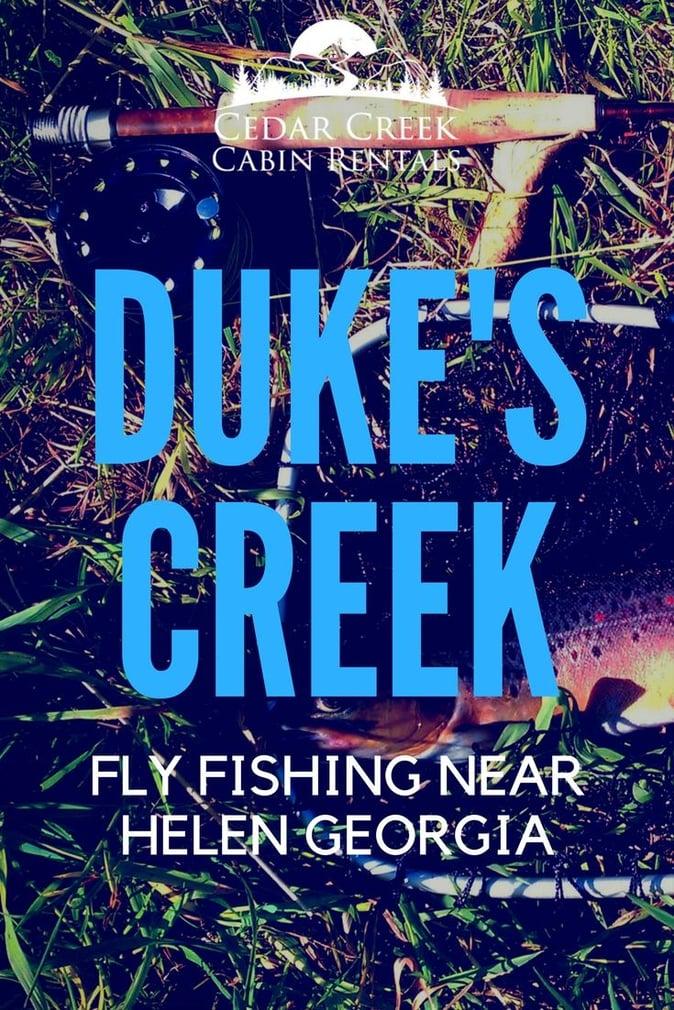 Insights on fly fishing dukes creek near helen georgia for Trout fishing in helen ga