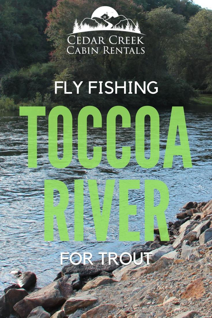 fly-fishing-toccoa-river-vertical.jpg