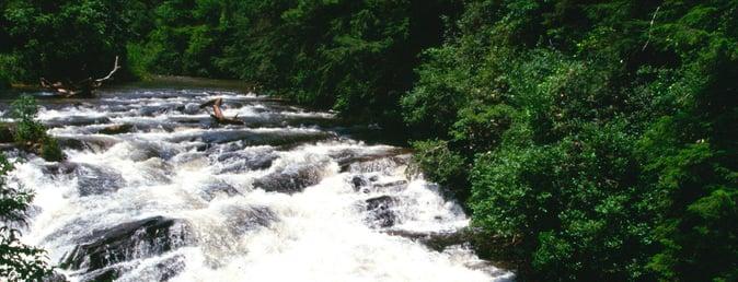 soque-river-trout-fishing-slim.jpg