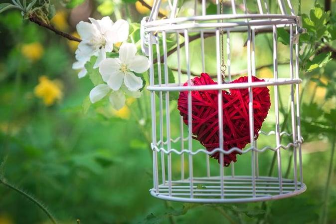 heart-cage-romance.jpg