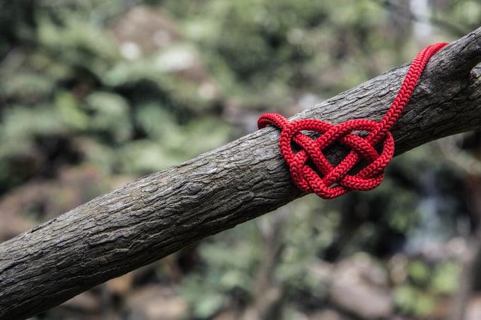 romance_fondue_loveknot_on_wood_will-o-253882-unsplash