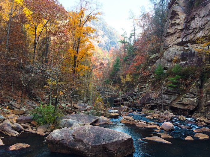 Adventure_Dukes Creek_matt-lightfoot-458110-unsplash