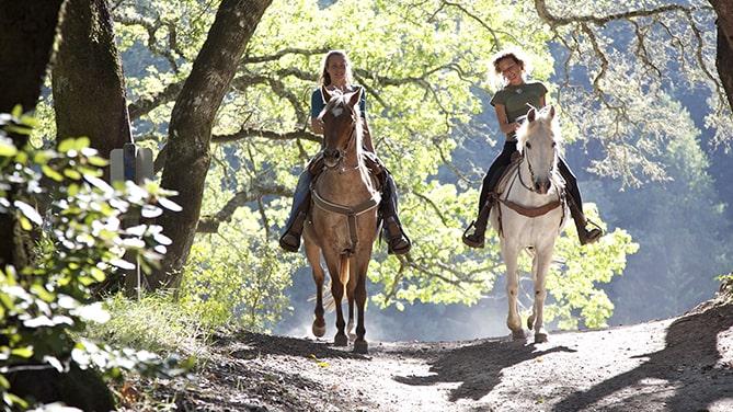Chattahoochee-Stables-Helen-Georgia-Horseback-Riding-Cedar-Creek-Cabin-Rentals