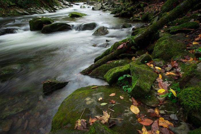Creeks-nathan-anderson-472390-unsplash