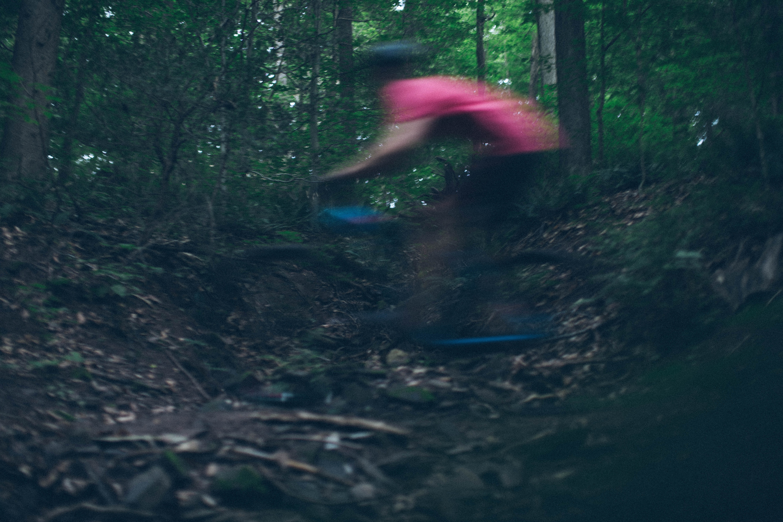 biking_woods_Trails-unsplash (1)