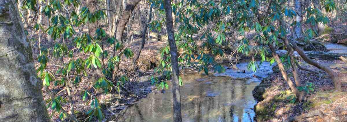 enchantment-river-outdoors-1