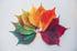 four-seasons-leaves-chris-lawton-us
