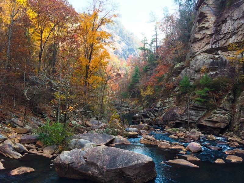 helen-georgia-river-matt-lightfoot-458110-unsplash