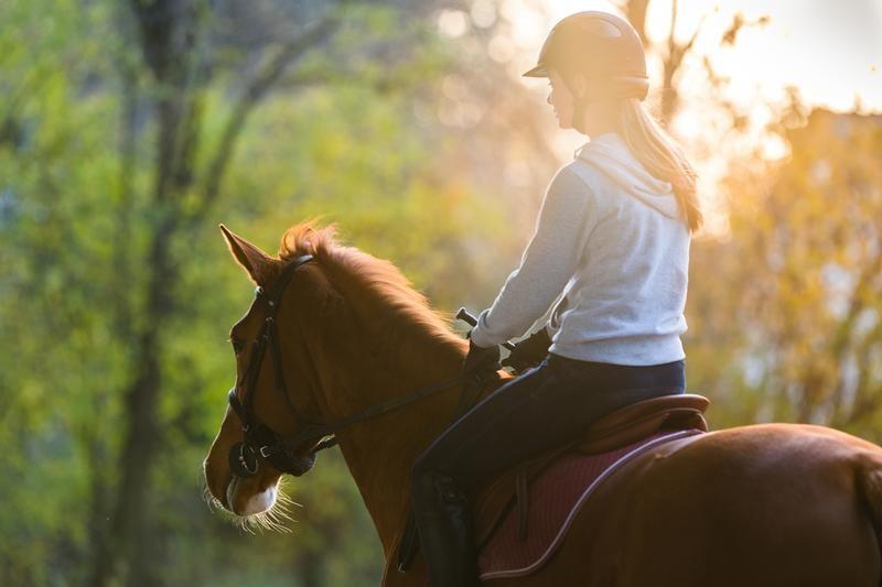 horseback-riding-shutterstock_571254433