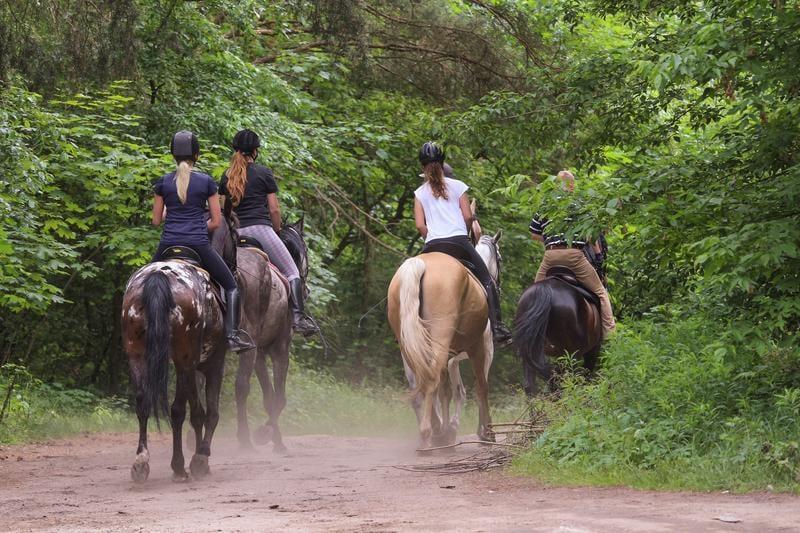 horseback-riding-shutterstock_659975935
