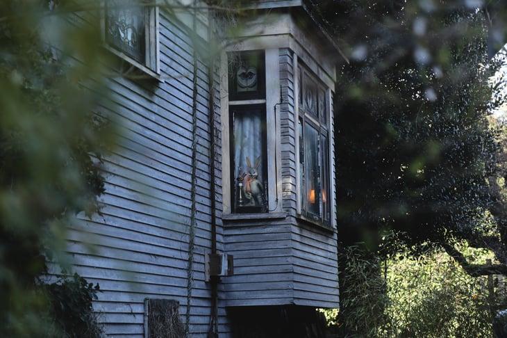 halloween-adventure-house-of-burm-ksenia-makagonova-169495-unsplash