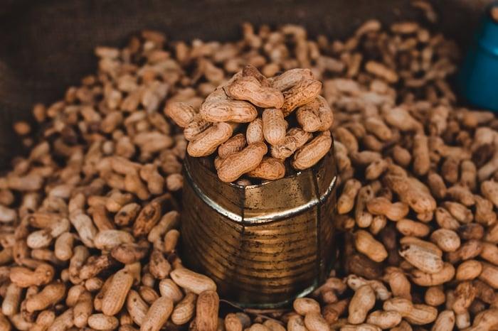 peanuts-samrat-khadka-us