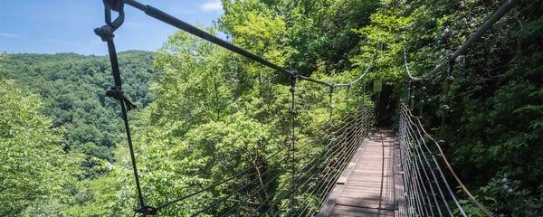 raven-cliff-falls-loop-6930