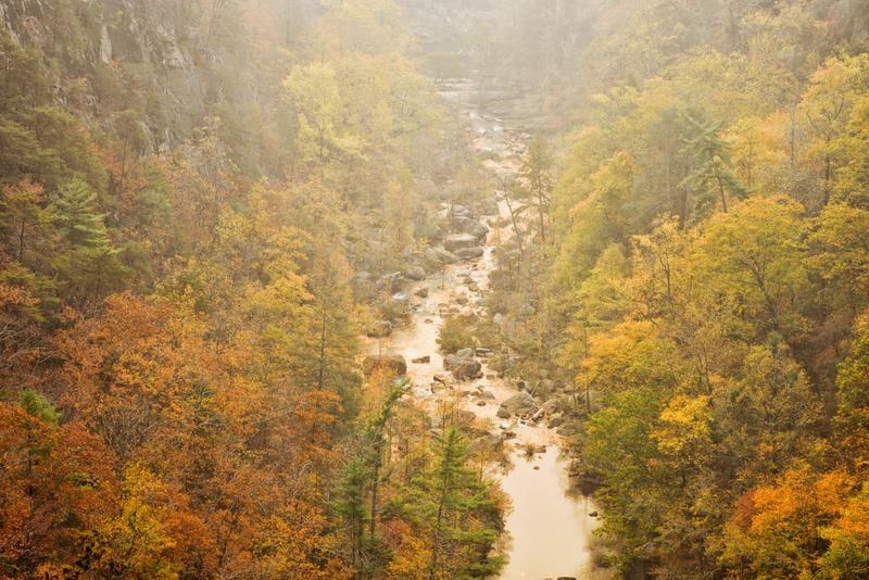 tallulah-gorge-shutterstock_744855433