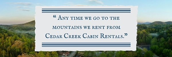 02-cabin-rental-review