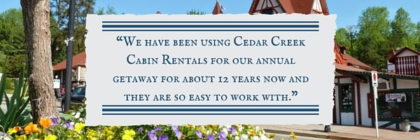 03-cabin-rental-review