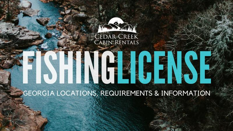Cedar creek cabin rentals blog for Trout fishing in helen ga