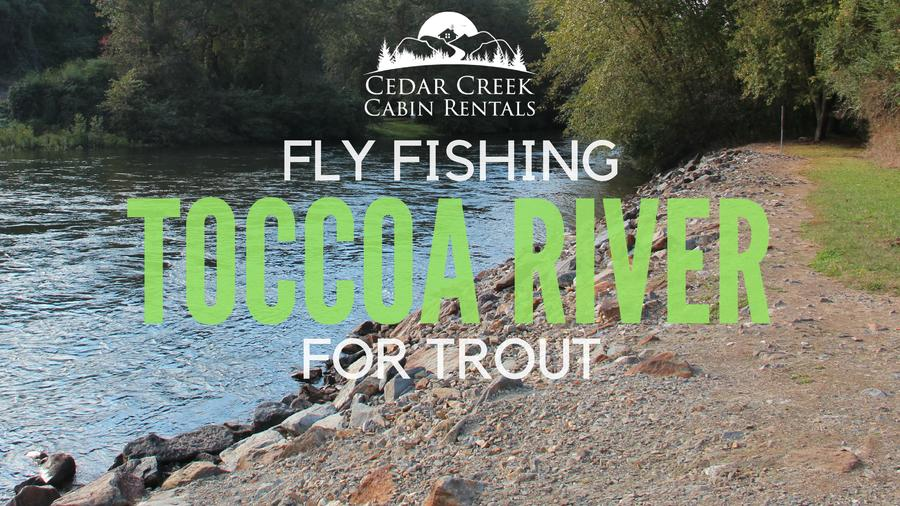 Cedar creek cabin rentals blog for Toccoa river fishing
