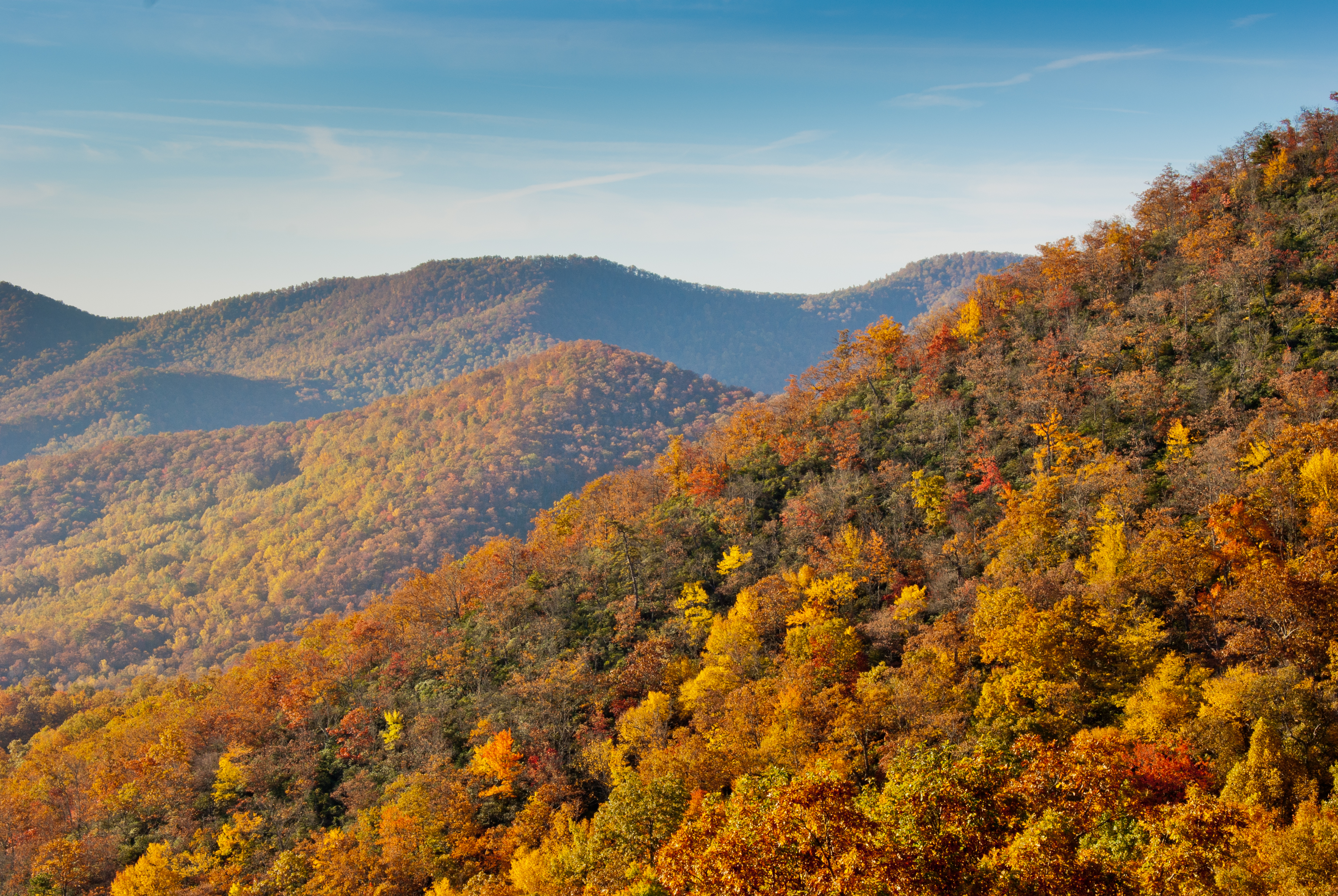 Fall_colors_from_the_Blue_Ridge_Parkway_just_south_of_Ashville