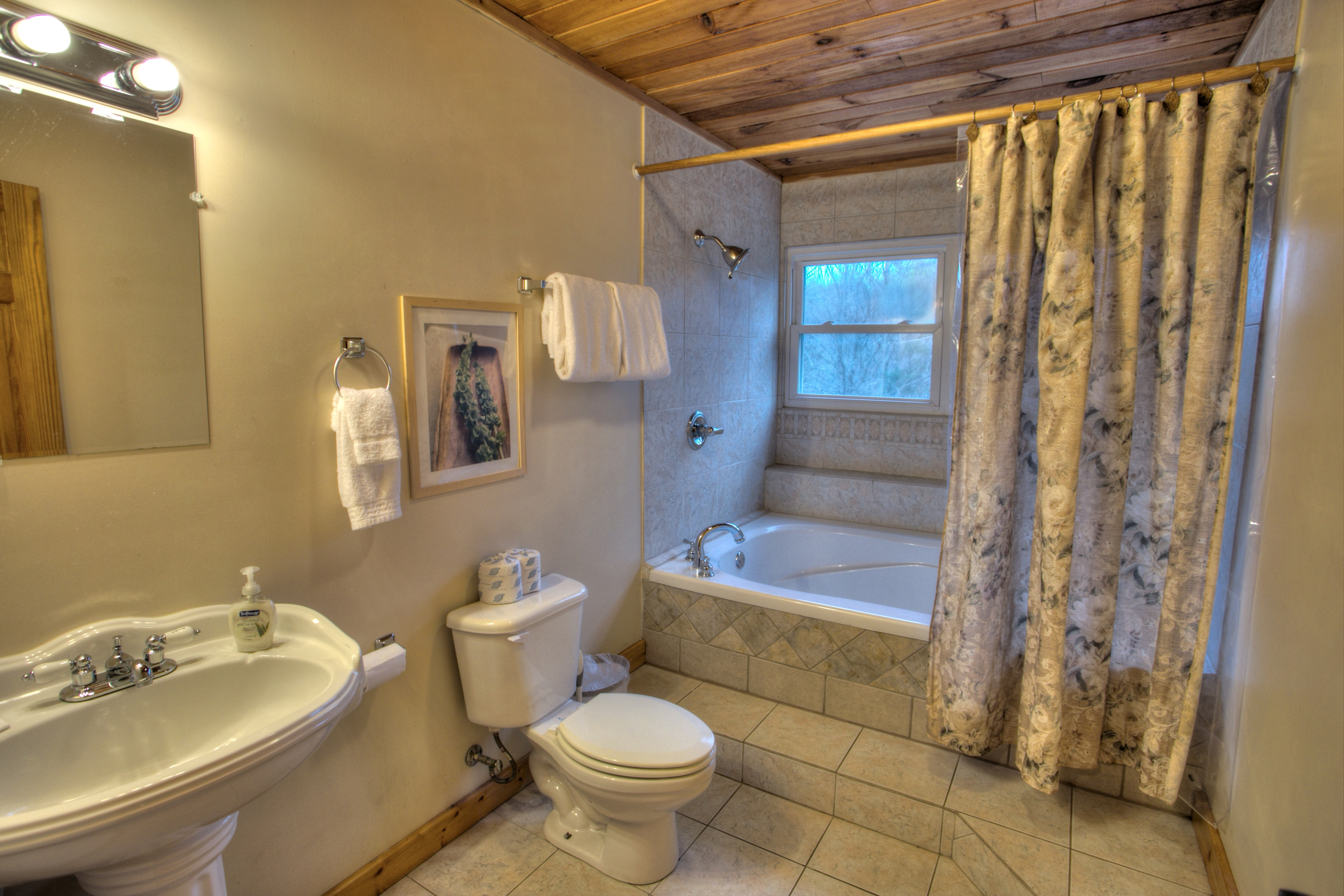 trout-lily-cabin-helen-ga-bathroom