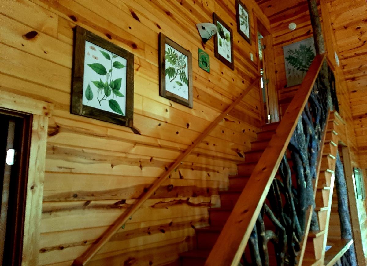stairway-bear-creek