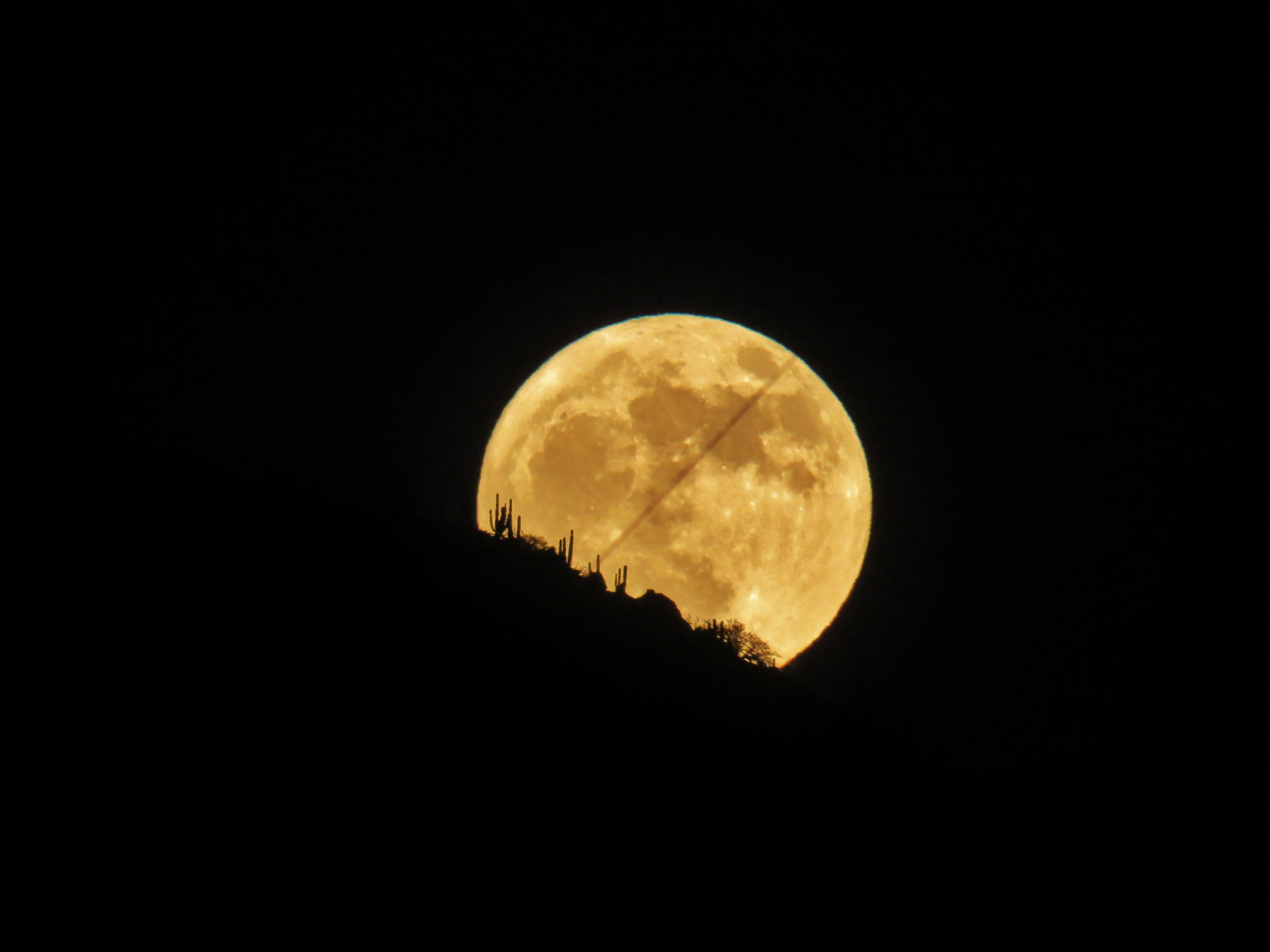 halloween-adventures-full-moon-gaston-bazzino-ferreri-581111-unsplash